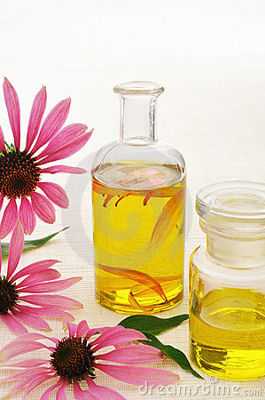 Coneflower essential  oil in bottle