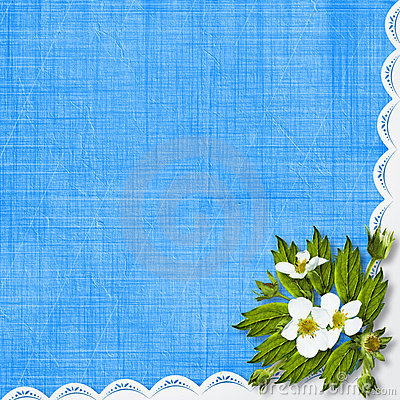 Congratulation With Frame And Flowers Stock Photo - Image: 14192360