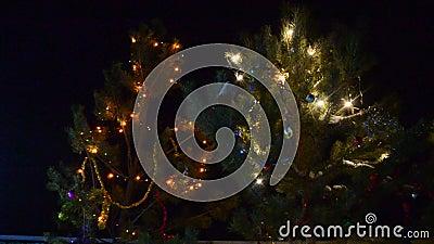 Coniferous Fichce mit leuchtenden Garnelen verziert im Wind auf der Straße dunkel neues Jahr zittert stock video footage