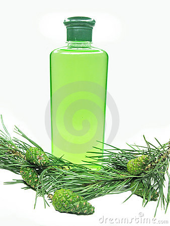 Coniferous green shampoo