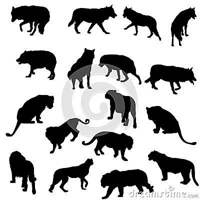 Conjunto de lobos, de tigres, de leopardos y de leones