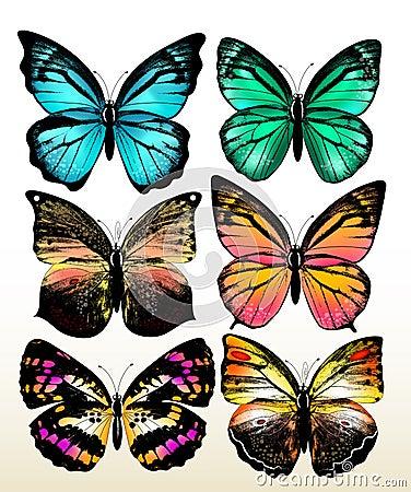 conjunto de mariposas coloridas del vector foto de archivo On mariposas coloridas