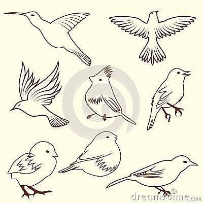 Conjunto del pájaro del bosquejo del differnet
