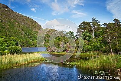 Connemara湖和山