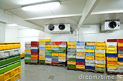 Conservación en cámara frigorífica