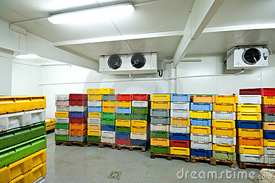 Conservazione frigorifera