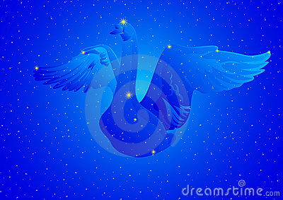 Constellation Cygnus
