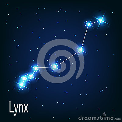 The constellation Lynx star in the night sky.