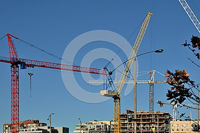 Construction Cranes of the Skyline