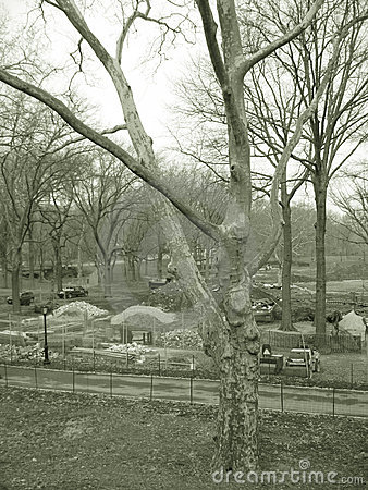 Construction site in park