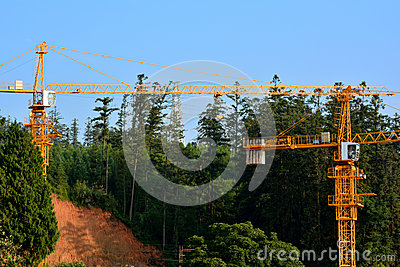 Construção ao lado do monte e da floresta