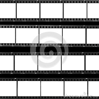 Free Contact Sheet Blank Film Frames Royalty Free Stock Photography - 27463427