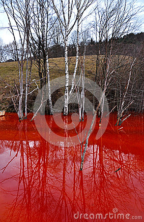 Contaminated mine water pollution of a copper mine exploitation