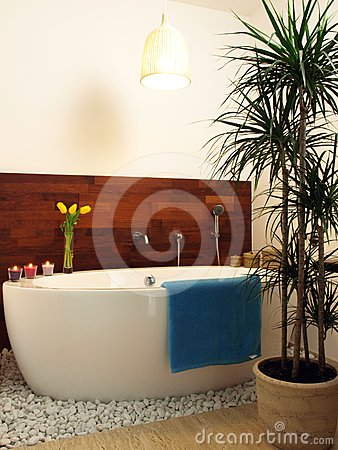 Contemporary Bathroom Stock Photography - Image: 24319882