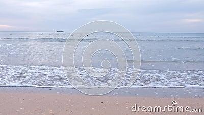 Contesto naturale della spiaggia di mare sabbioso, piccole onde lunghe di schiuma, uccelli al tramonto stock footage