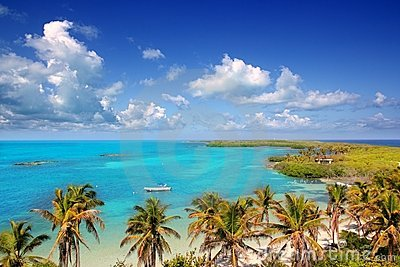 Contoy tropical caribbean island Mexico