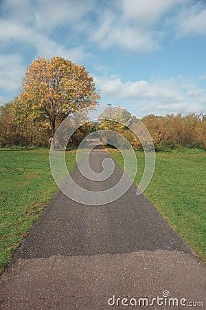 Converging Trail