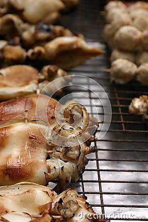 Cooked calamari