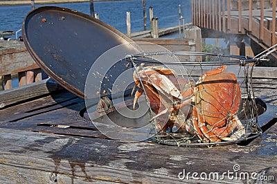 Cooking crab in outdoor pot