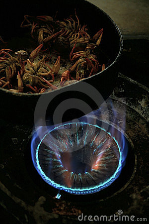Cooking crayfish on a gaz cooker