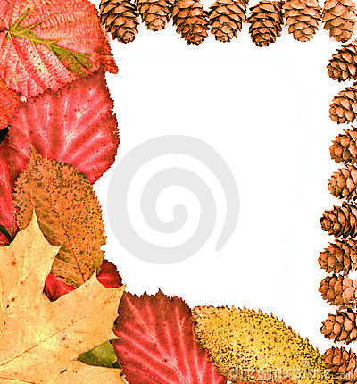 Copyspace with leaves and little cones