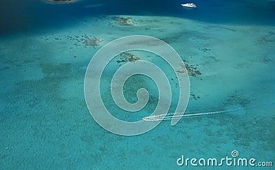 Coral reef at Borabora