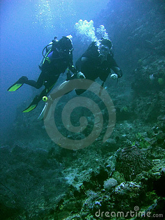 Free Coral Reef Scuba Diving Couple Philippines Royalty Free Stock Image - 1202756