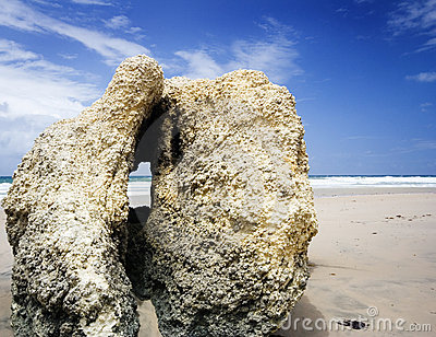 Coral rock