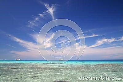 Coral travel destination
