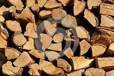 A cord of cut wood.