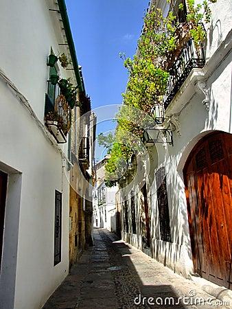 Cordoba old street