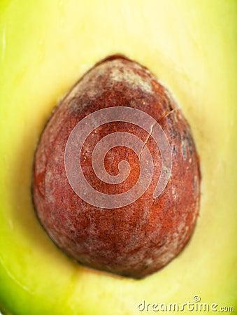 Core of avocado