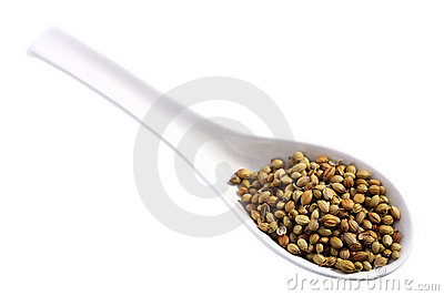 Coriander on a spoon