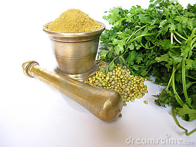 Coriander in various forms