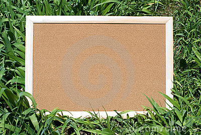 Cork board in nature
