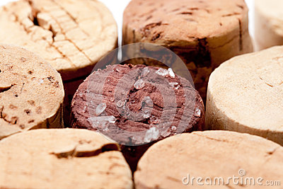 Cork of a wine bottle with tartar