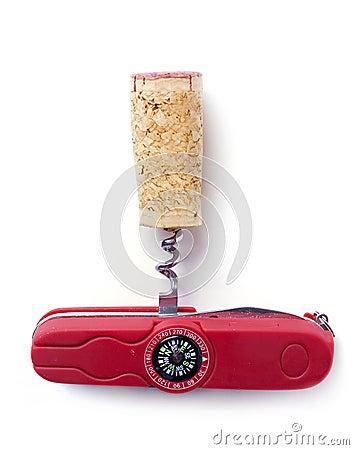 Corkscrew&cork