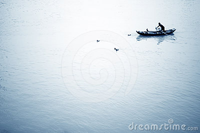 Cormorant fishing