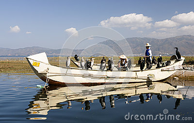Cormorant Fishing in China Editorial Image