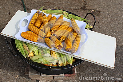 Boiled corn cobs
