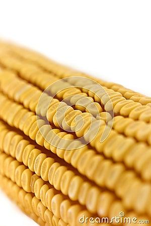 Corn cob detail