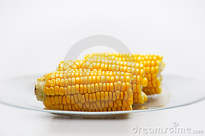 Corn Cobs on a glass plate. Small DOF