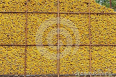 Corn container