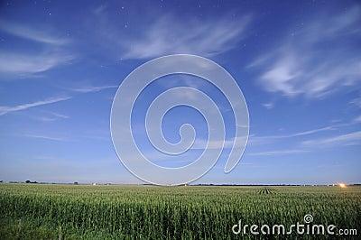 Corn fields at night in Iowa