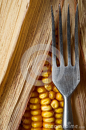 Corn and fork close-up.
