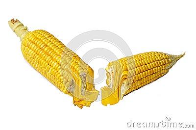 Corn fruit and fresh oil