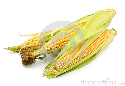 Corn group