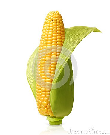 Free Corn Isolated Royalty Free Stock Photo - 59329765