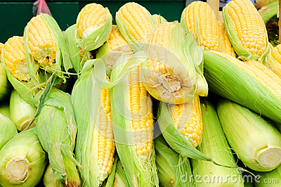 Corn in the market