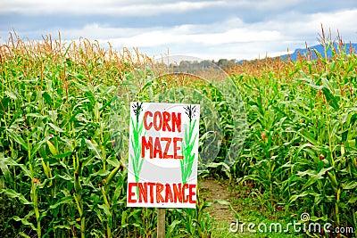 Corn maze business plan